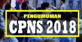 Pengumuman Jadwal Seleksi SKD CPNSD Kab.Sinjai Tahun 2018